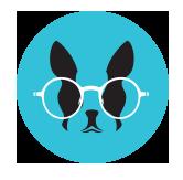 Bravo dog logo