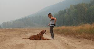 dog trainer Katie Guille