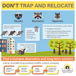 don't trap and relocate wildlife