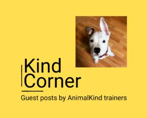 Kind Corner dog training tips