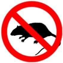 Vernon Rodent Control